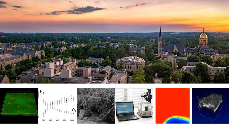 Biofilm Course 2020 at Notre Dame